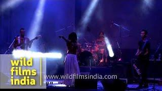 Purple Fusion entertaining the audience: NagaFest 2012, Delhi