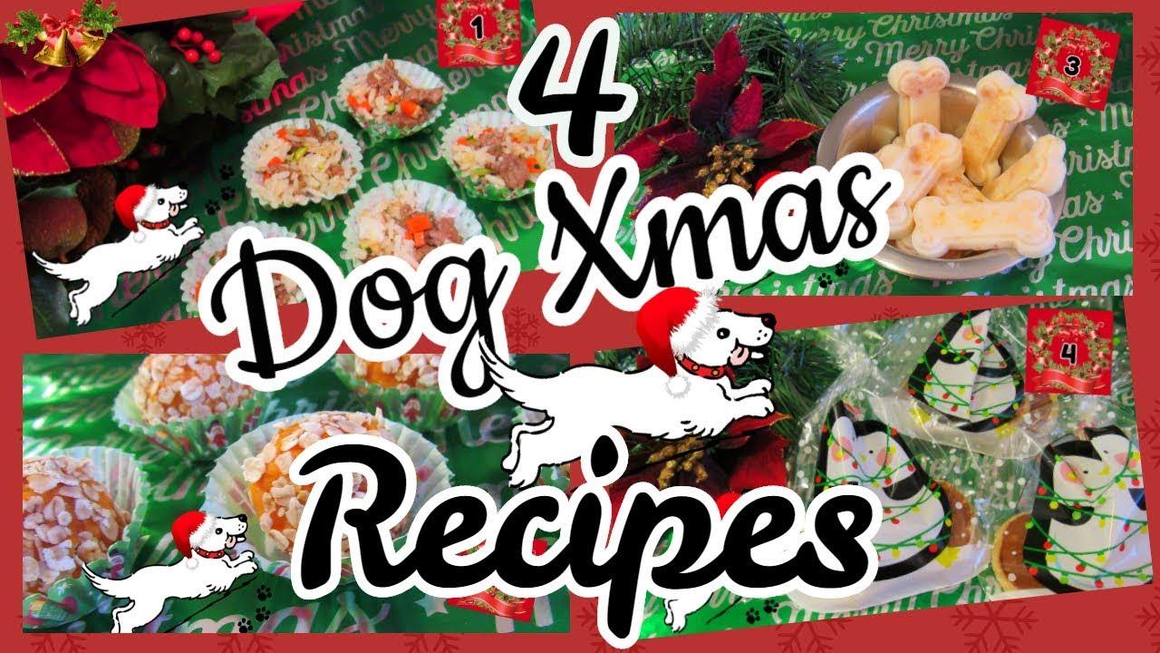 How To Make Christmas Dog Treats Dog Gift Ideas Holiday Dog