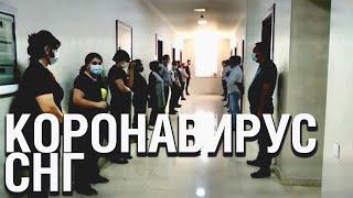 В Азербайджане арестовали организаторов свадьбы