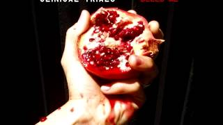 "Clinical Trials - ""White Fence"" - clinicaltrialsmusic.com Thumbnail"