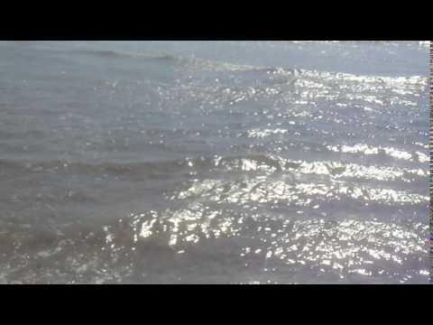 Atlantic Ocean Water Very Clean   No Jellyfish