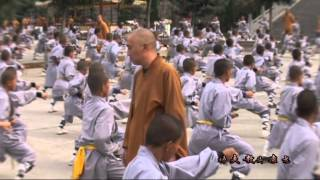 Shaolin Kung Fu Wellness Center