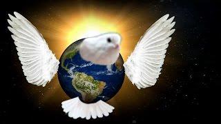 Chim Cánh Cụt - Khoa học vui - Vì sao Trái Đất biết bay ?