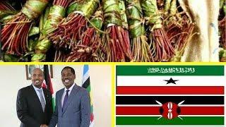 Xukumada Kenya Oo Shaacisay In Xidhiidh Ganacsi Ay Somaliland La Bilabayan