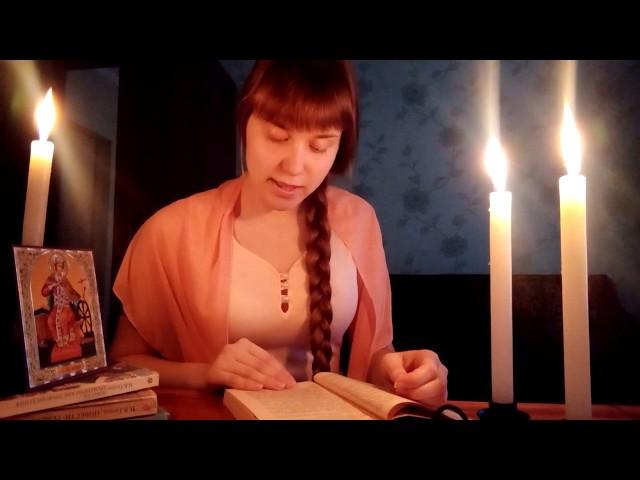 Изображение предпросмотра прочтения – ЕкатеринаЛискина читает отрывок изпроизведения «Ночь перед рождеством» Н.В.Гоголя