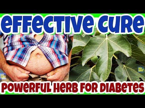 Fig Leaves For Diabetes Disease: This NATURAL Remedies will Cure Diabetes Disease