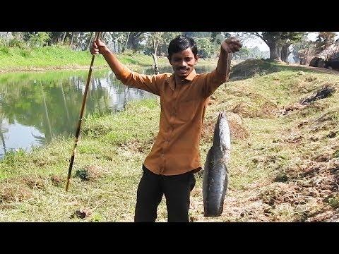 Fish Angling Daily | I'm Fishing Save CATFISH Life 2019! Fish Hunting Fishing (FHF)