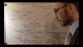 Введение в языкознание.  Морфологическая типология языков