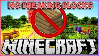 NO Breaking Blocks Building Challenge!