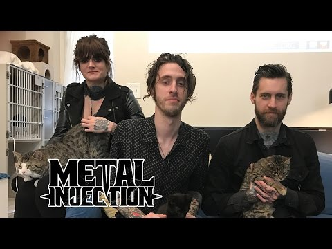 ROYAL THUNDER Visits The Brooklyn Cat Cafe | Metal Injection