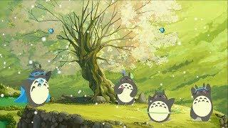 스트레스 릴리프를위한 아름다운 피아노 음악 - 휴식과 수면 살면서 한번쯤 들어봐야할 음악 모음(슬럼프일때 들어보세요) 🍒 Studio Ghibli Songs Piano Relax