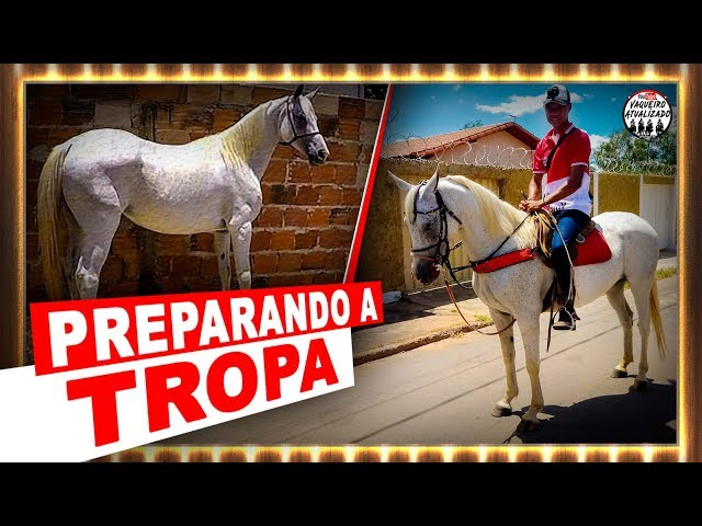 Preparando a Tropa para Cavalgada de São Sebastião
