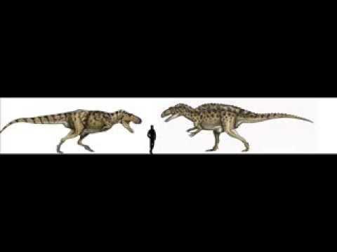 Acrocanthosaurus vs Tarbosaurus