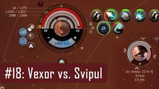 Lenai's Solo PvP #18 – Vexor vs. Svipul, neutralized | EVE Online