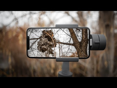Running With DJI Osmo Mobile 2 And IPhone XS Max Captured With FiLMiC Pro