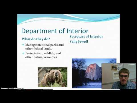 Executive Departments Video