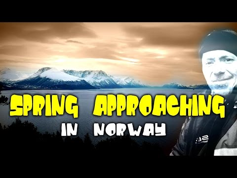SPRING APPROACHING TO NORWAY (nature lives)
