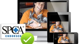Doggy Dans Online Dog Trainer Review   Doggy Dans Online Dog Trainer Video Membership From Top Dog T