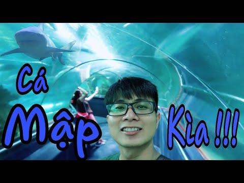 Vinpearl Land Nha Trang | Thiên đường vui chơi