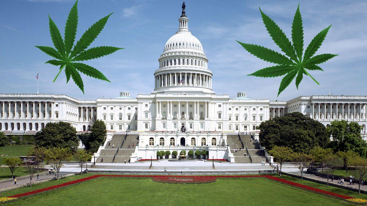 Politicians Use False Stats To Keep Marijuana Illegal
