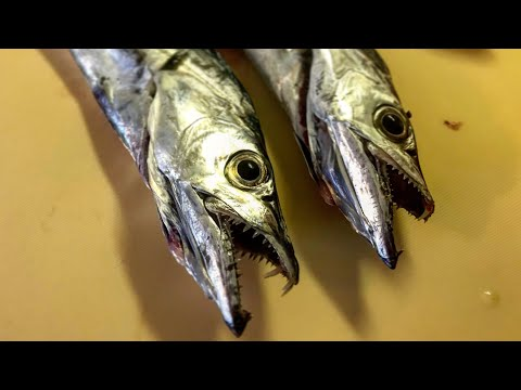 CATCH & COOK: 'Sea Serpents' (Ribbonfish)