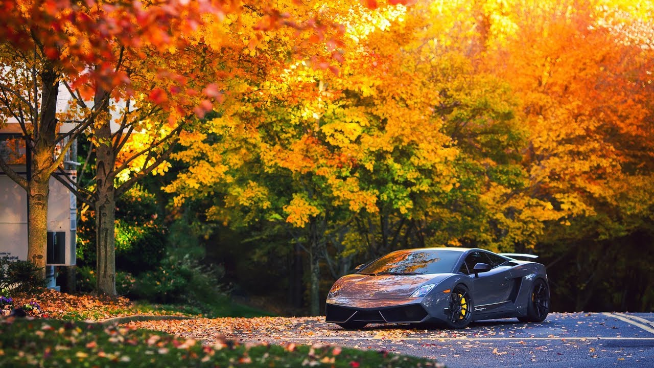 Fall Pumpkin Patch Wallpaper 5 Amazing Sports Cars Wallpapers Free Download 4k