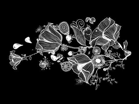 Футаж #цветок на черном фоне скачать бесплатно