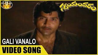 Swayamvaram is a 1982 telugu film starring sobhan babu and jayapradha in lead roles. rao gopala dasari narayana supporting the wri...