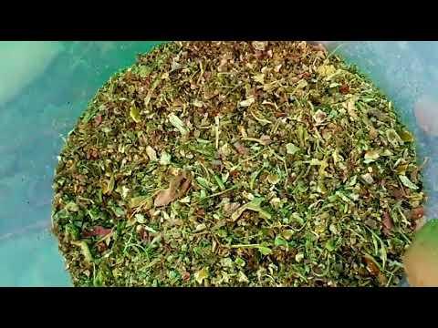 Recycle kitchen waste into plant fertilizer