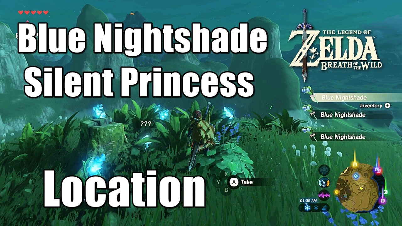 Where To Find Blue Nightshade And Silent Princess In The Legend Of Zelda Breath Of The Wild Youtube