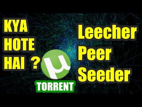 SEEDER, LEECHER & PEER Some Common Torrent...