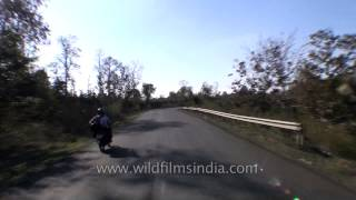 Road trip from Jabalpur to Kanha