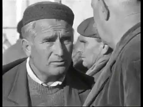 Bukovica Dokumentarni film 1968