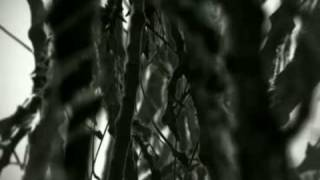 Sunpocrisy - Aeon