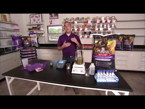 Purina® Outlast™ Horse Supplement Live Demonstration