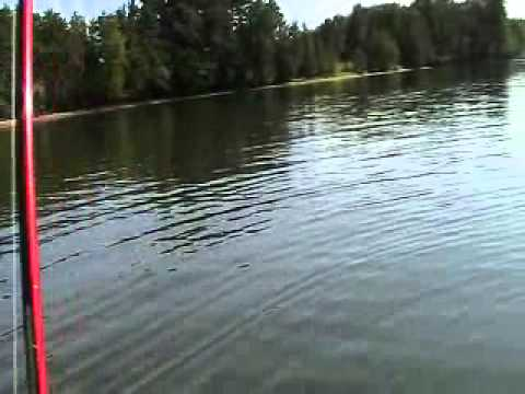 Catfishing dewitt bridge at clinton lake illinois july for Clinton lake il fishing report