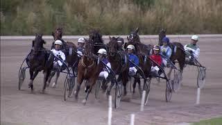 Vidéo de la course PMU PRIX DE GRONINGEN