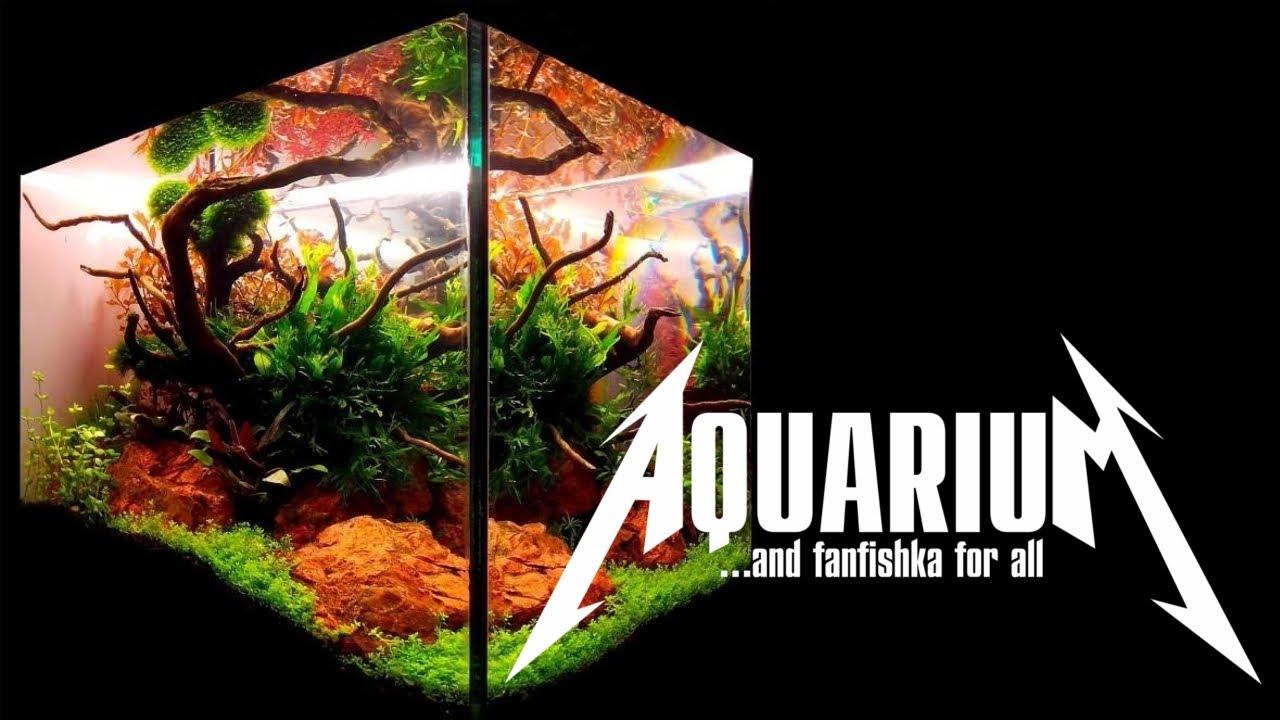 Убойная ФИЛЬТРАЦИЯ И АЭРАЦИЯ АКВАРИУМА с растениями, ЛУЧШИЕ ФИЛЬТРЫ для аквариума на 300 литров