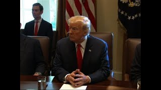 Trump Holds Cabinet Meeting With Chief Of Staff