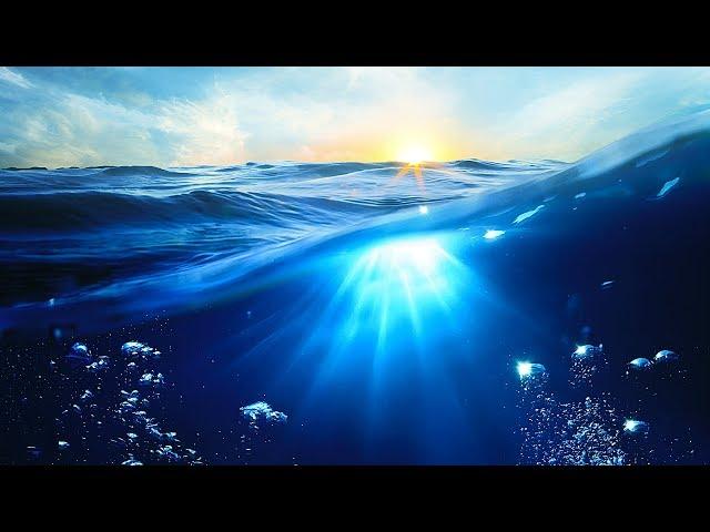 El mar sin vientos ni costas