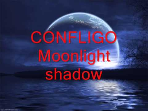 CONFLIGO - Moonlight Shadow (MIKE OLDFIELD cover)