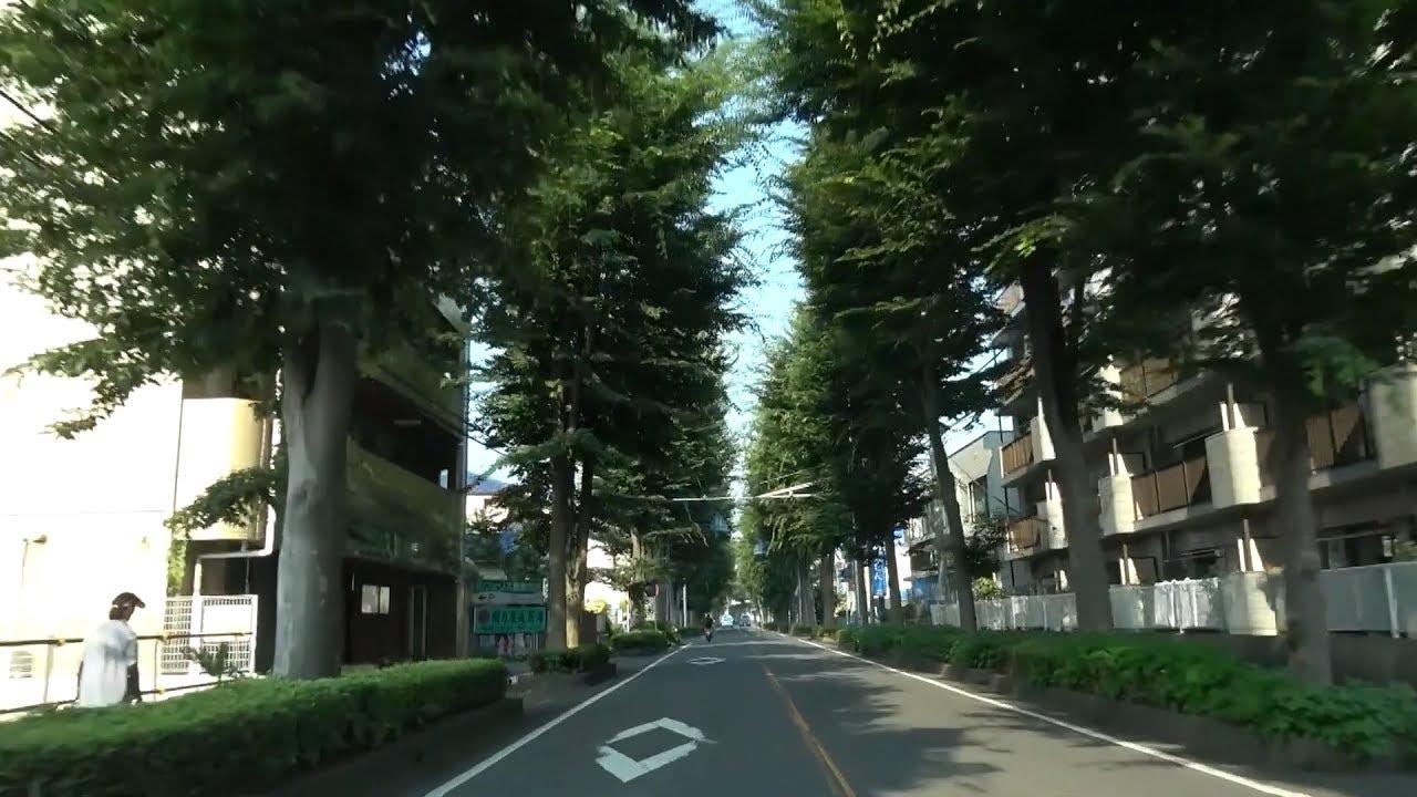 埼玉県道179号 01 所沢青梅線 所...