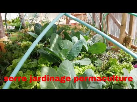 Permaculture avec serre pour jardin intérieur - YouTube