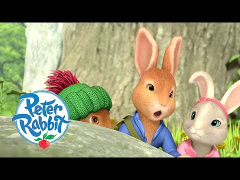 Peter Rabbit - Meeting all the Rabbits and Friends | Cartoons for Kids