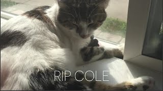 Caprice & Ella 218.5 | RIP Cole  Nunca te olvidaremos