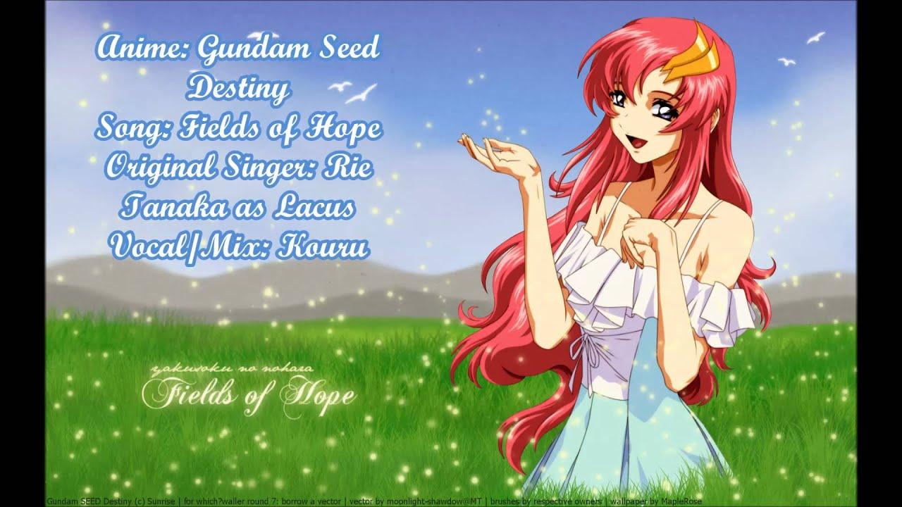 Gundam seed destiny fields of hope