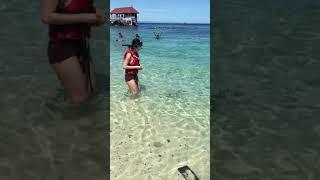 Travelling to Malaysia - Fish Feeding at Pulau Redang