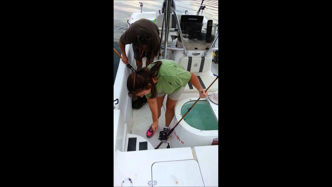 Carter S Lake 17lb Catfish Youtube