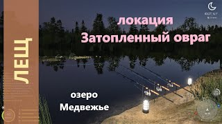 Русская рыбалка 4 озеро Медвежье Лещ на точке амура и карпа
