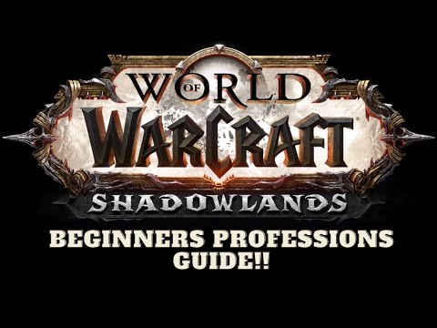 A beginners guide to World of Warcraft Professions 2020